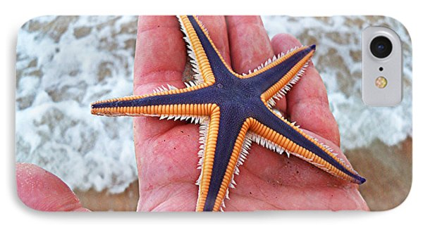 Royal Starfish - Ormond Beach Florida Phone Case by Melissa Sherbon