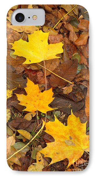 IPhone Case featuring the photograph 3 Shades Of Yellow by Jim McCain