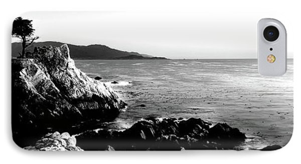Silhouette Of Lone Cypress Tree IPhone Case