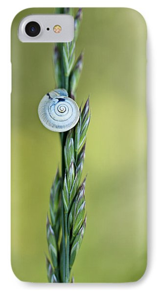 Snail On Grass IPhone Case