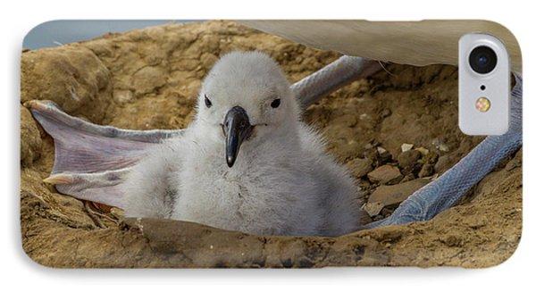 South America, Falkland Islands IPhone Case