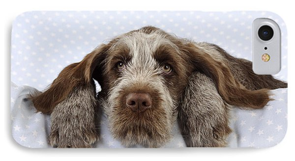 Spinone Puppy Dog IPhone Case