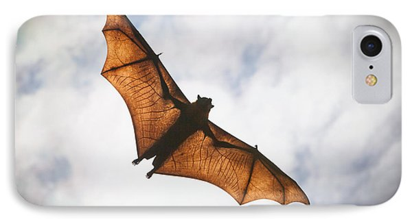 Spooky Bat IPhone Case by Craig Dingle