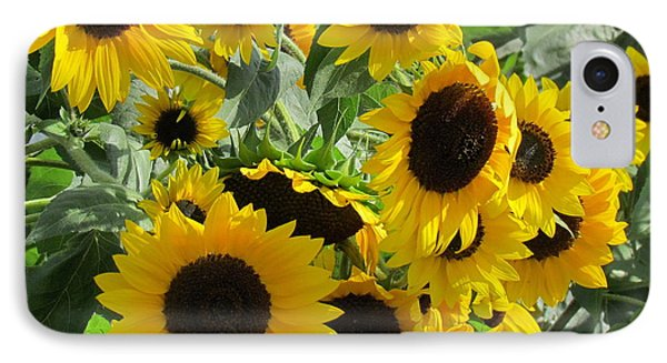 Sunflower Field IPhone Case by France Laliberte