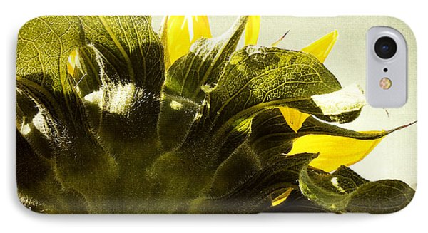 Sunflower Phone Case by Les Cunliffe