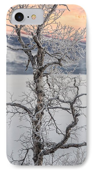 Trees In The Frozen Landscape, Cold IPhone Case