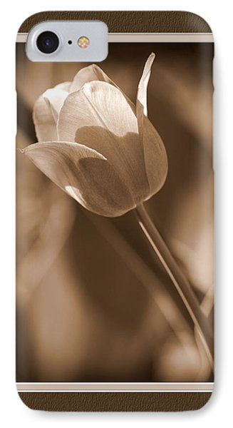 Tulip Closeup IPhone Case by Charles Feagans