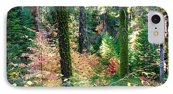 IPhone Case featuring the photograph Untitled by Kristen R Kennedy