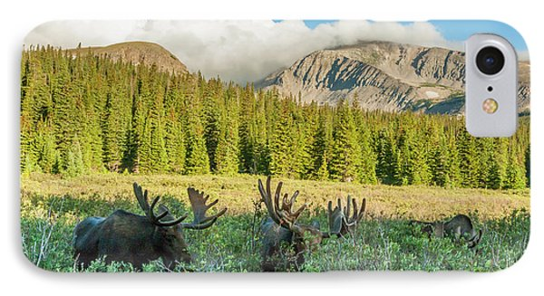 Usa, Colorado, Arapaho National Forest IPhone Case by Jaynes Gallery