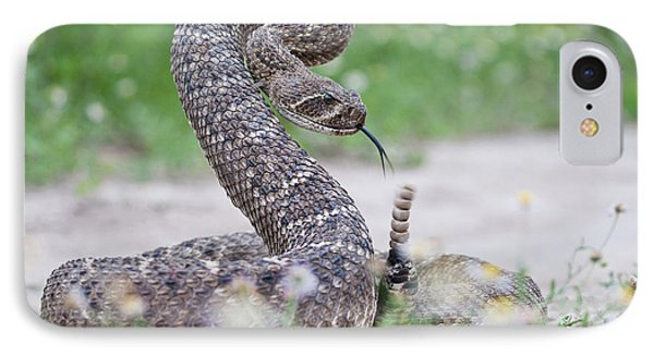 Western Diamondback Rattlesnake IPhone 7 Case