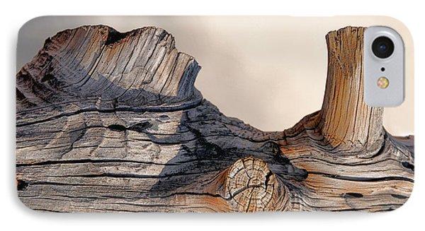 Wooden Landscape IPhone Case by JoAnn Lense