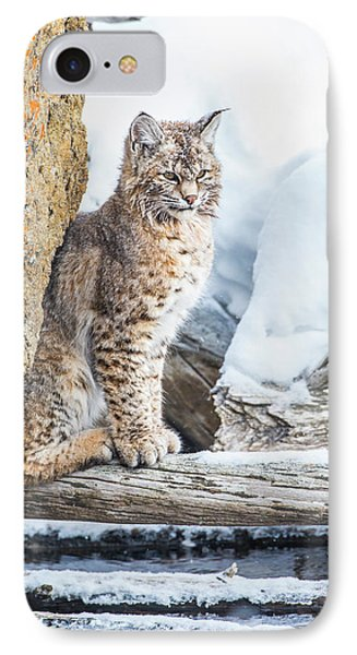 Wyoming, Yellowstone National Park IPhone Case by Elizabeth Boehm