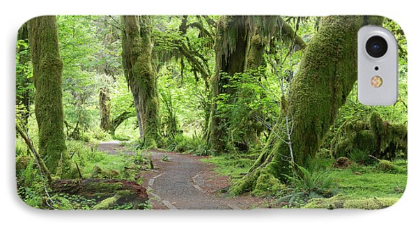Usa, Washington, Olympic National Park IPhone Case by Jaynes Gallery