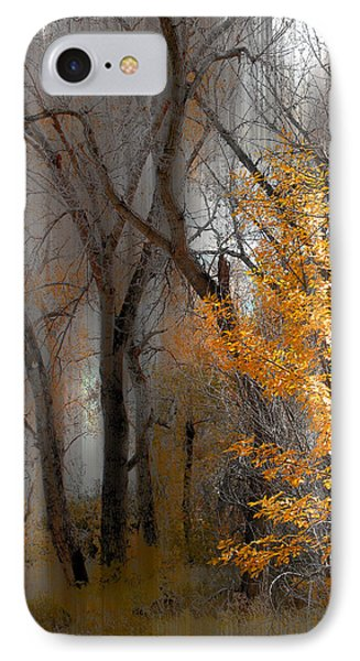 3707 IPhone Case by Peter Holme III