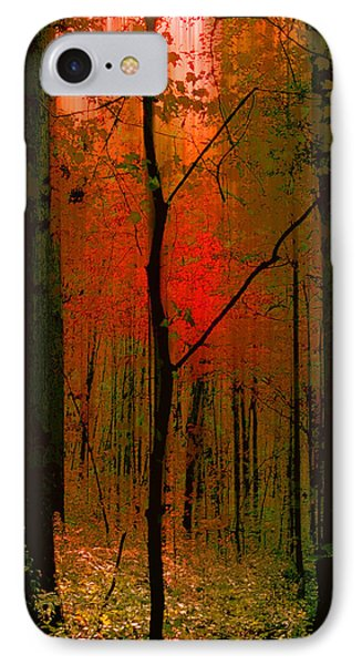 3734 IPhone Case by Peter Holme III