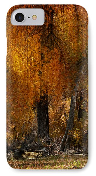 3777 IPhone Case by Peter Holme III