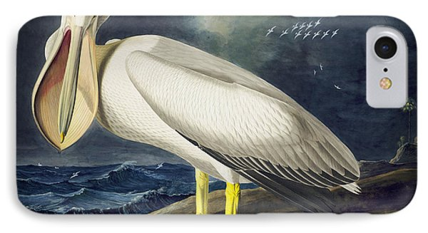 American White Pelican Phone Case by Celestial Images