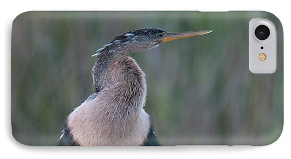 Anhinga IPhone 7 Case by Mark Newman