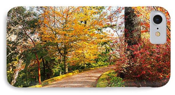 Autumn Colors Phone Case by Gaspar Avila