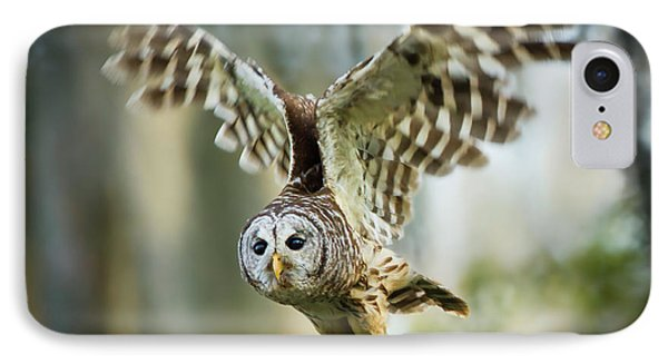 Barred Owl (strix Varia IPhone Case