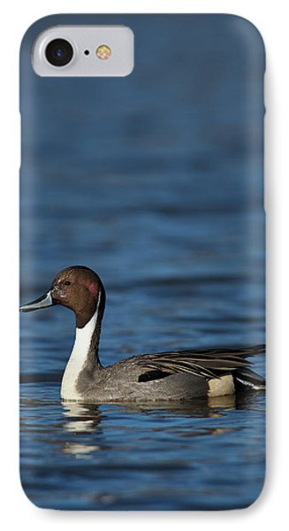 Canada, British Columbia, Westham IPhone Case by Rick A Brown