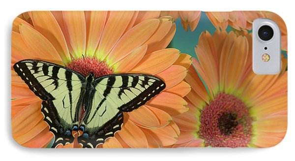 Canadian Tiger Swallowtail Butterfly IPhone Case
