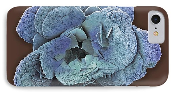 Coccoliths, Sem IPhone Case by Steve Gschmeissner