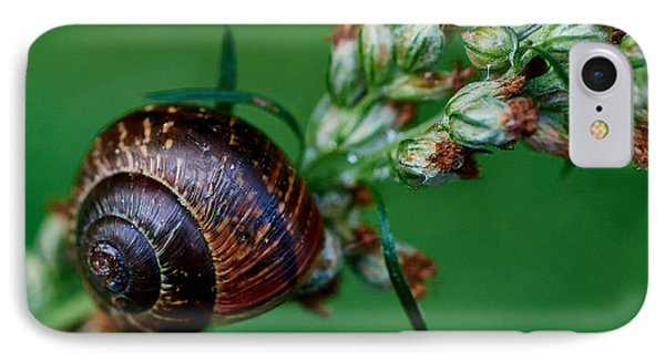 Copse Snail Phone Case by Jouko Lehto