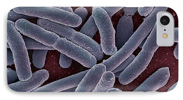 E Coli Bacteria Sem Phone Case by Ami Images