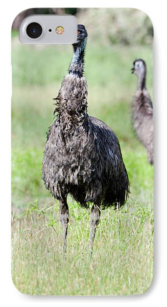 Emu (dromaius Novaehollandiae IPhone 7 Case by Martin Zwick