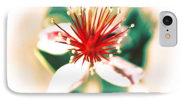 IPhone Case featuring the photograph Flower by Gunter Nezhoda