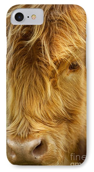 Highland Cow Phone Case by Brian Jannsen