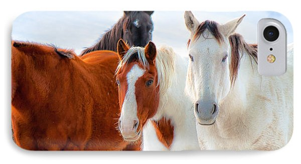 4 Horses IPhone Case by John McArthur