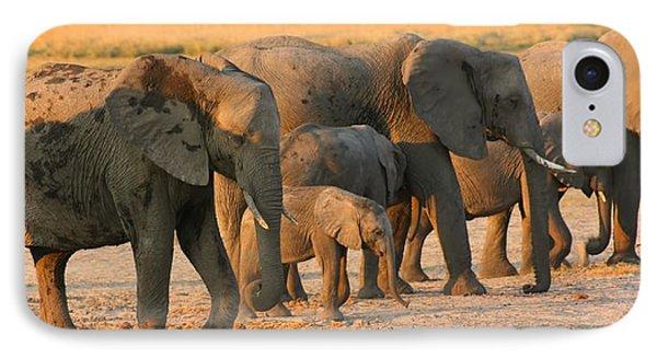 IPhone Case featuring the photograph Kalahari Elephants by Amanda Stadther