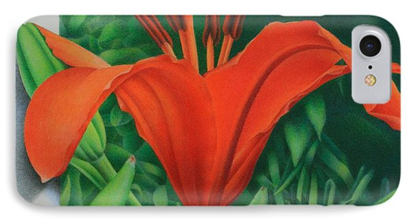 Orange Lily IPhone Case by Pamela Clements