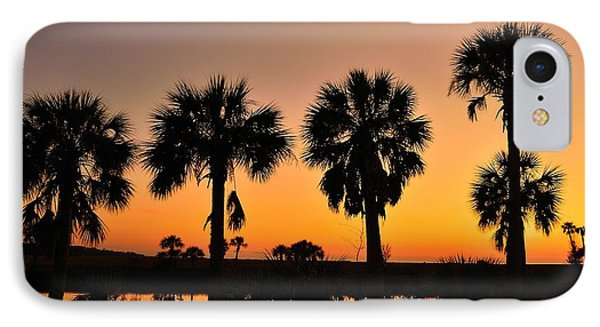 4 Palms In After Glow IPhone Case by Richard Zentner