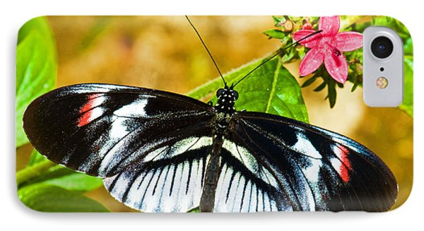 Piano Key Butterfly Phone Case by Millard H. Sharp