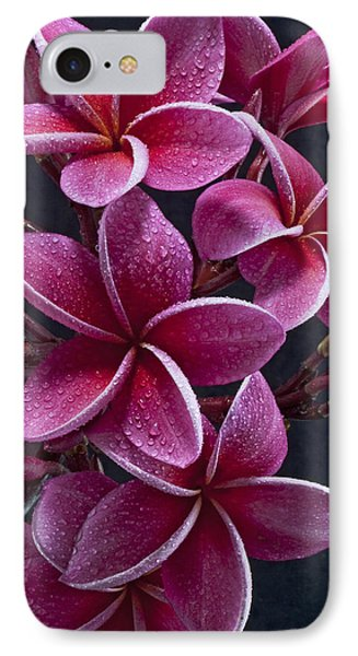 Plumerias IPhone Case by James Roemmling