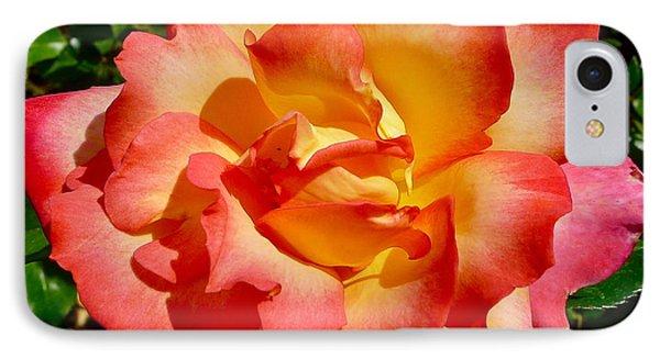Rainbow Sorbet Rose IPhone Case