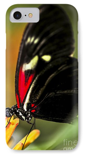 Red Heliconius Dora Butterfly IPhone Case