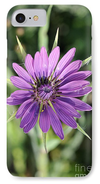 IPhone Case featuring the photograph Salsify Flower by George Atsametakis