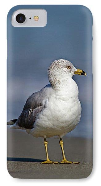 Seagull Vii IPhone Case