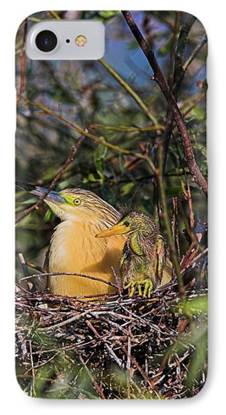 Squacco Heron (ardeola Ralloides IPhone Case by Martin Zwick
