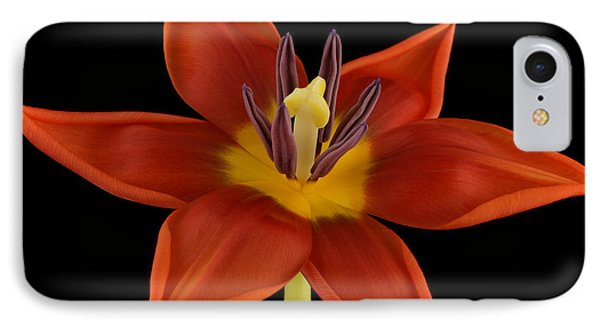 Tulip Phone Case by Mark Johnson