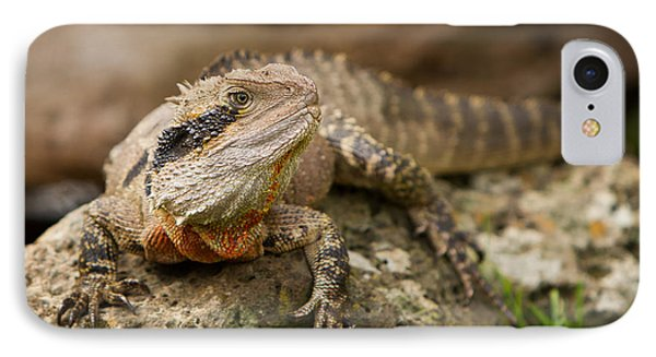 Water Dragon IPhone Case by Craig Dingle