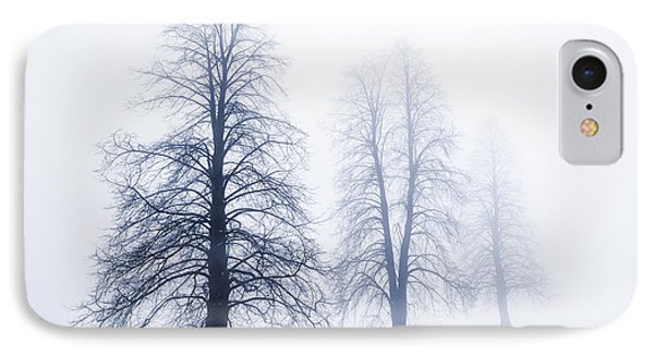 Winter Trees In Fog Phone Case by Elena Elisseeva