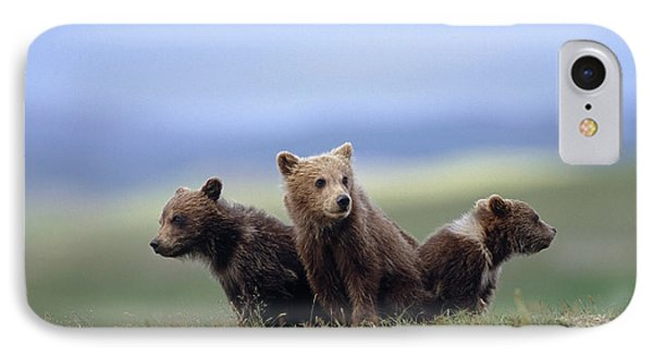 4 Young Brown Bear Cubs Huddled IPhone Case by Eberhard Brunner