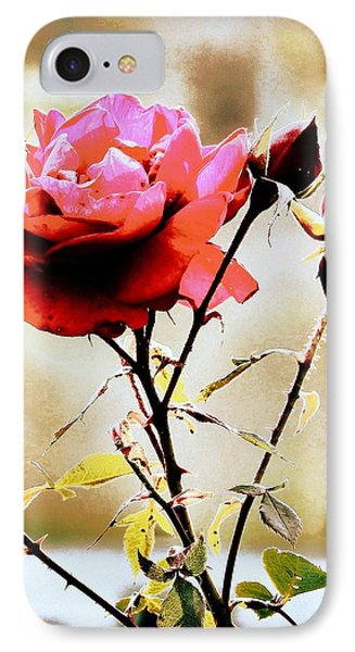 IPhone Case featuring the photograph 40 Something by Faith Williams