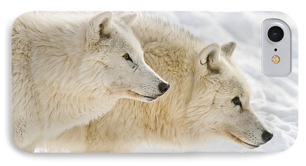 Arctic Wolves IPhone Case