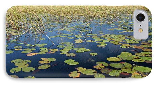 Botswana, Okavango Delta IPhone Case